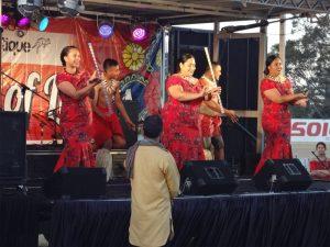 Punjabi Folk Festival 12